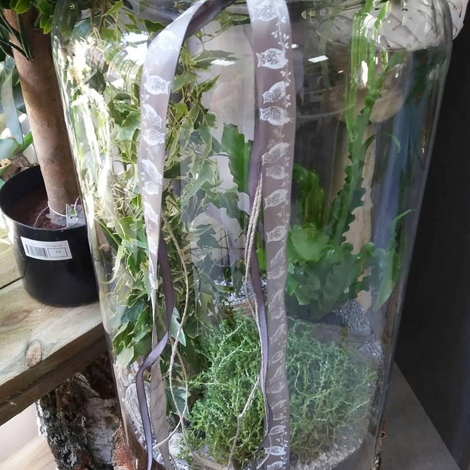 wysokie szklane naczynie z roślinami